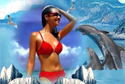 Рамка с дельфинами, вставить фото онлайн сделать oline